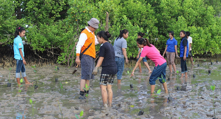 Program Pelestarian Hutan Mangrove (FKP)